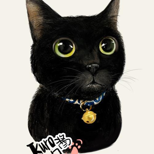 萌宠帆布包-小黑猫
